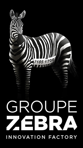 Groupe Zebra - Strategic Consulting Agency, Marketing Innovation and Design