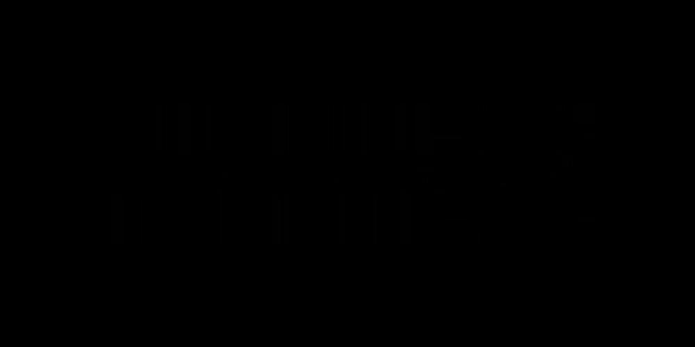 https://www.groupezebra.com/wp-content/uploads/2019/09/rossignol-logo-noir.png
