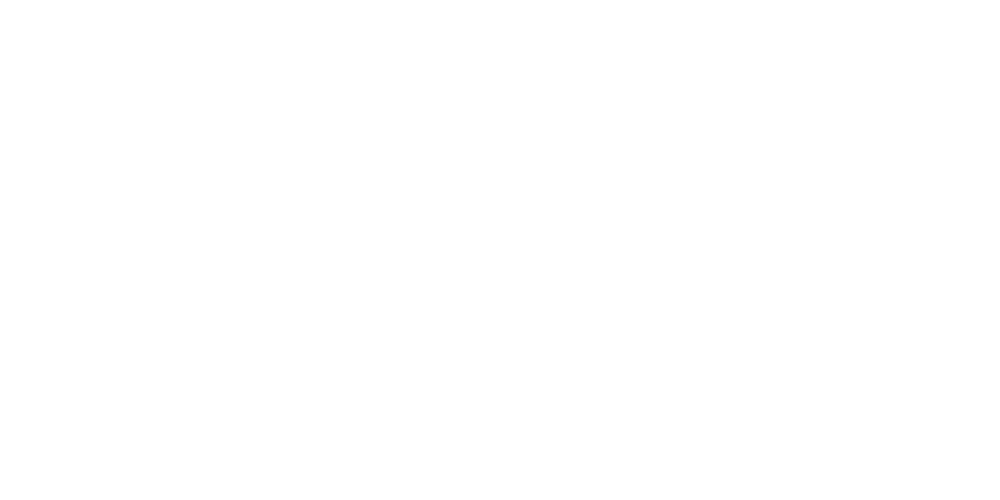 https://www.groupezebra.com/wp-content/uploads/2019/10/bornier-b.png