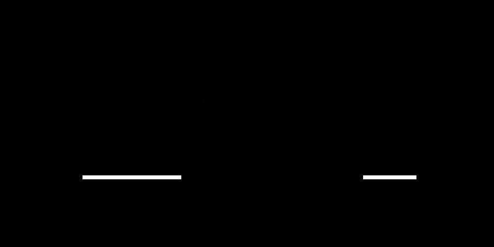 https://www.groupezebra.com/wp-content/uploads/2020/01/kempa-logo-noir.png